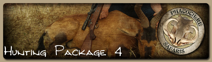 Hunting Package 4