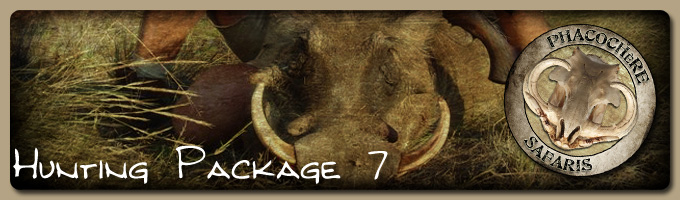 Hunting Package 7